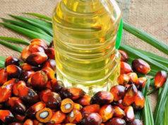 Пальмова олія. Чи потрібна її заборона в Україні